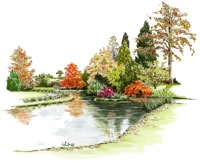 Water colour drawing of stream at Llanover Gardens