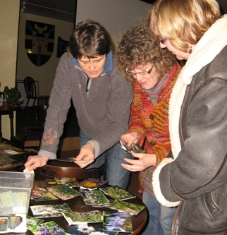 Choosing seeds from photographs at Kidwelly