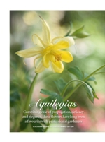 Aquilegia flower: Touchwood feature in Gardens Illustrated Magazine, May 2013